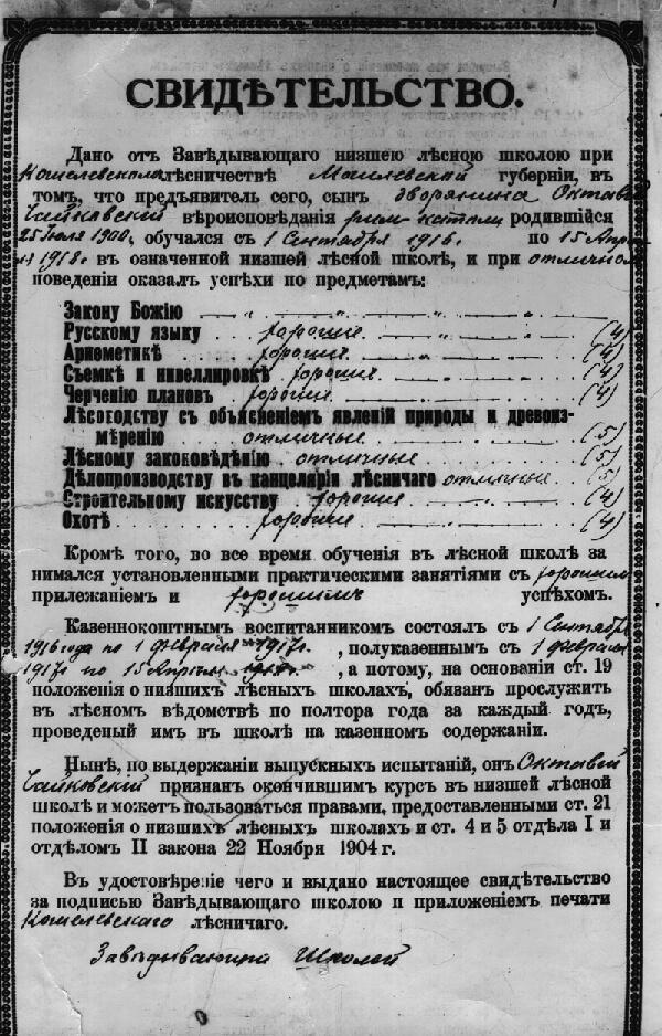 Свидетельство выданное выпускнику лесной школы (1918г).